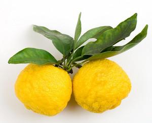 Freshyuzufruit